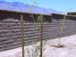 AF Riverside wall created using Proto-II Wall Systems